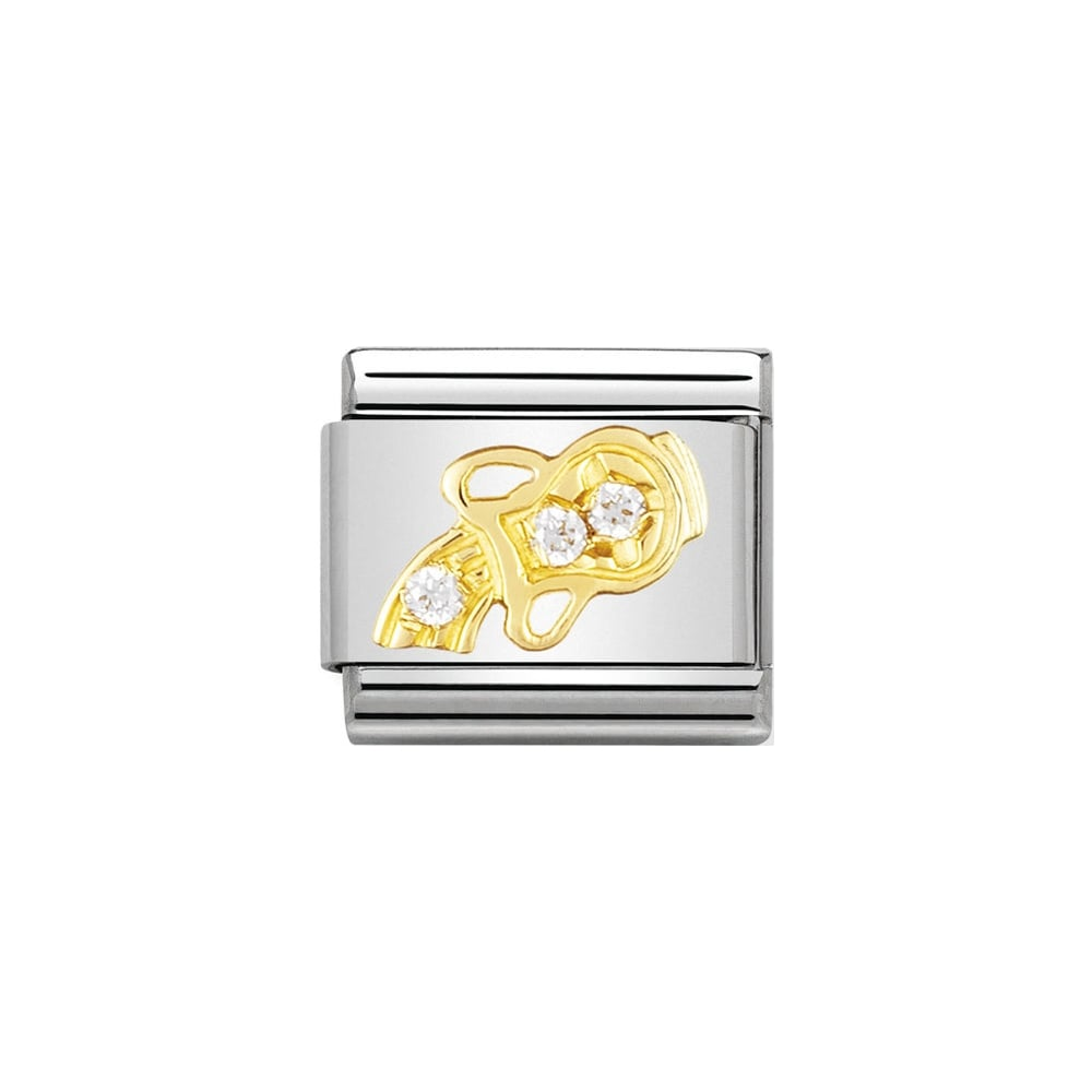 Stainless steel Nomination charm with 18k gold & cubic zirconia Aquarius water-carrier symbol