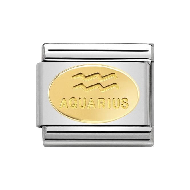 Stainless steel Nomination link with 18k gold oval engraved with 'Aquarius' and zodiac symbol