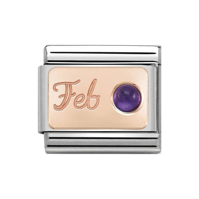 Stainless steel link with 9k rose gold plate with 'Feb' engraving and round amethyst stone